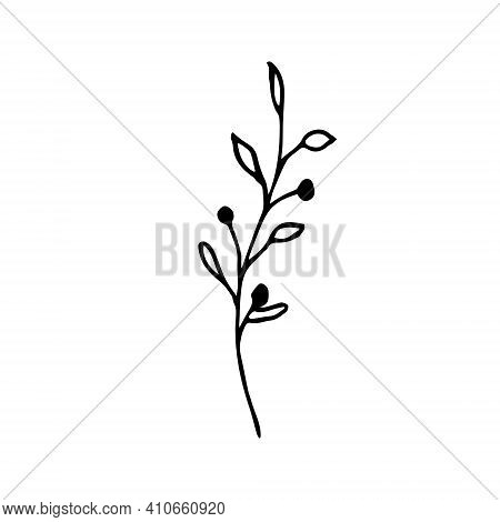 Doodle Twig With Berries And Leaves On A White Background Isolated. Vector Illustration Of A Plant T