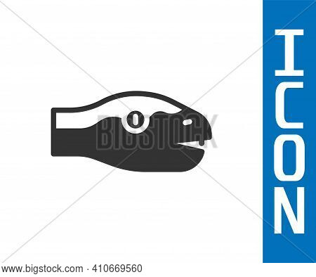 Grey Snake Icon Isolated On White Background. Vector