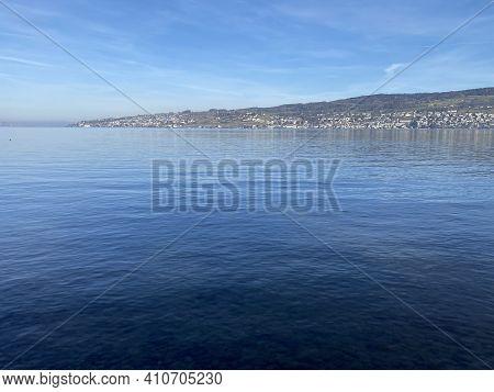 Lake Zurich (zuerichsee Oder Zürichsee) And A Coastal Landscape With Vegetation In Late Winter In Th