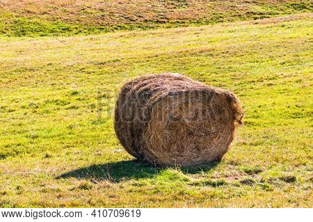 Agricultural Field With Haystacks, Stack Of Round Hay Bales. Hay Balls On A Field.