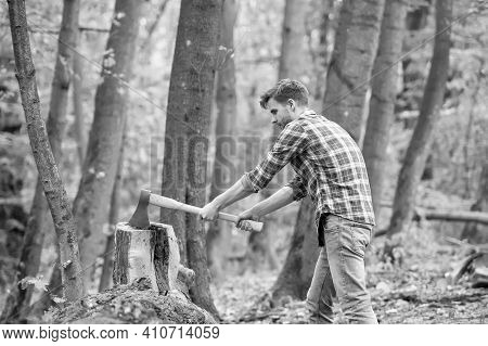 Just One Hit. Chopping And Splitting Firewood With Axe. Lumber Worker In Wood. Spend Picnic Weekend