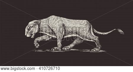 European Cave Lion. Panthera Spelaea. Extinct Steppe Animal. Vintage Retro Vector Illustration. Dood
