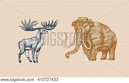 Mammoth Or Extinct Elephant And Irish Elk Or Giant Deer Or Great Horn. Trunked Mammals Or Proboscide