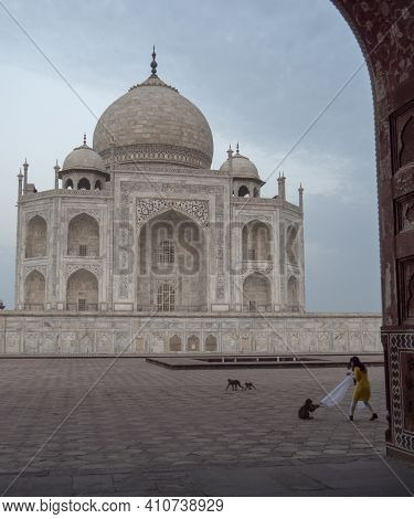 Agra, India - March, 26, 2019 Early Morning View Of The Taj Mahal, Framed By An Arch, With A Mischie
