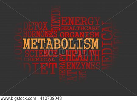 Tags Cloud Of Metabolism. Words Collage. Infographic Illustration