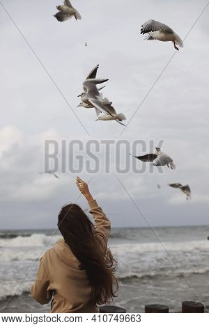The Seagull Takes Bread From The Girl's Hands On The Fly. A Girl On The Background Of An Exciting Sk