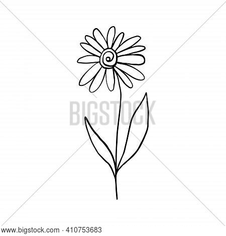 Chamomile Doodle Style. Line Art Flower Design With Leaves And Petals. Minimalistic Botanical Logo O