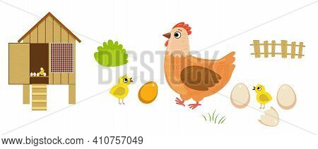 Chicken, Egg, Chicks And Coop Isolated On White Background. Mother And Babies. Flat Cartoon Vector I