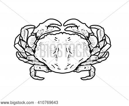 Drawing  Crab On A White Background. Illustration.seafood Logo Restaurant, Bar, Cafe.retro Style Cra