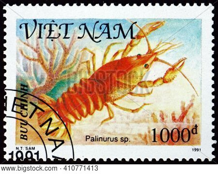Vietnam - Circa 1991: A Stamp Printed In Vietnam Shows Palinurus, Shellfish, Circa 1991