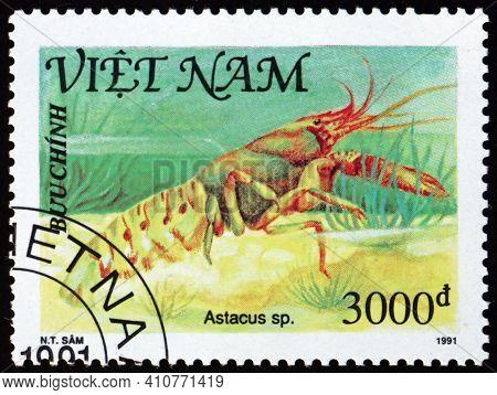 Vietnam - Circa 1991: A Stamp Printed In Vietnam Shows Astacus, Shellfish, Circa 1991