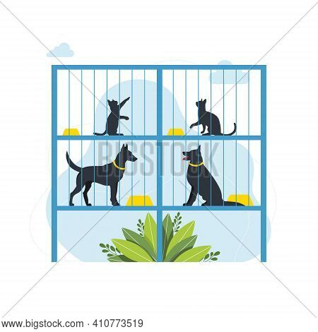 Lonely Animals In Cages Wait For The Adoption. Rehabilitation Or Adoption Center For Stray Pets. Ado