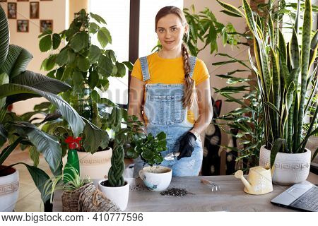 A Young Woman Transplants Flowers At Home. Spring Care For Potted Flowers. Spring, Care, Home Plants
