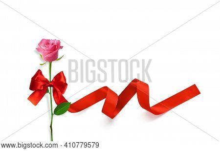 Pink Rose Flower With Ribbon And Bow On A White Background. Valentine Day, Flowers Delivery, Women S