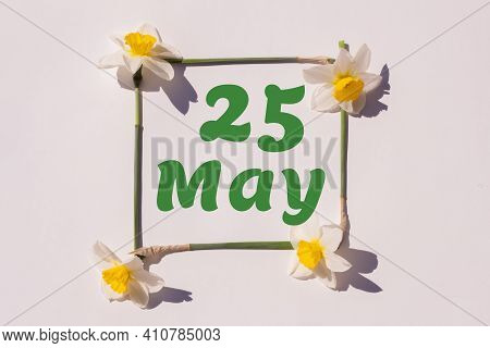 May 25th. Day 25 Of Month, Calendar Date. Frame From Flowers Of A Narcissus On A Light Background, P