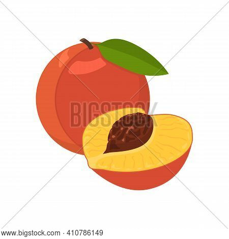 Peach Fruit. Flat Vector Illustration Of Ripe Whole And Half Peach.