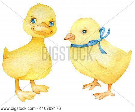 Set Of Cute Poultry - Chicken And Duckling, Watercolor Illustration In Cartoon Style. Easter Yellow