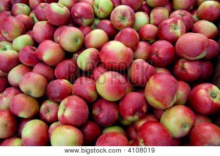 Macintosh Apple Grouping