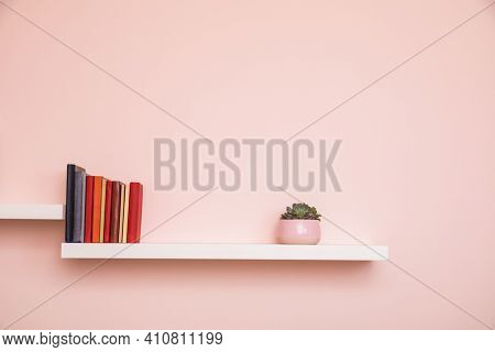 Simple white shelves on pale pink colored wall with books and succulent in pink pot. No titles shown on books