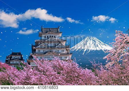 Fuji Mountains And Castle With Cherry Blossom In Spring, Japan.