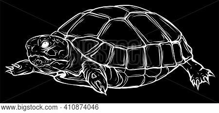 Silhouette Turtle Vector Icon.cartoon Vector Icon Isolated On White Background Turtle.