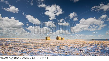Round Hay Bales On A Winter Harvested Field On The Canadian Prairies In Rocky View County Alberta.
