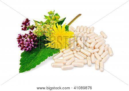 Capsule beige with herbs