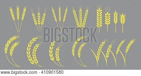 Collection With Golden Spikelets. Vector Icon. Nature Illustration. Stock Image. Eps 10.