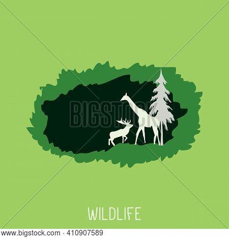 Wildlife Nature Vector Design Background, Poster, Banner, And Social Media Post. Deer, Zebra, And