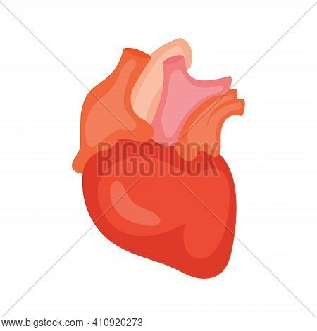 Heart. Icon. Vector Illustration Isolated On White Background