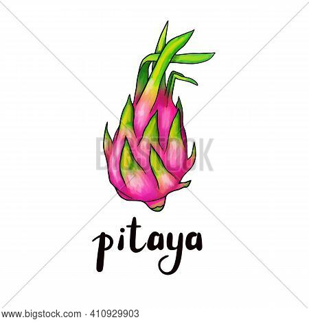 Exotic Pink Pitahaya Fruit With Green Leaves On The Top. Dragon Fruit, Pitahaya With Pitaya Inscript