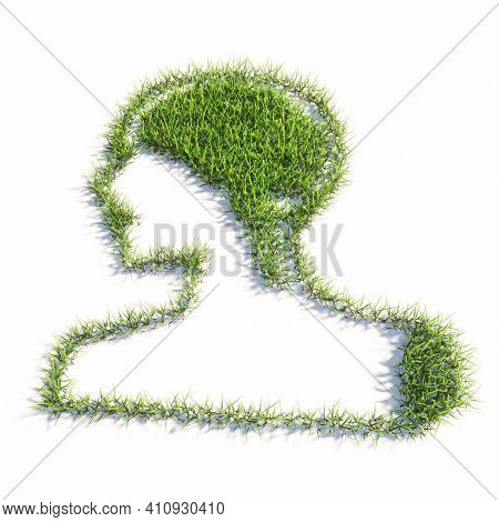 Concept or conceptual green summer lawn grass symbol shape isolated on white background, sign of  human brain.  A 3d illustration metaphor for science, intelligence, anatomy, neurology, brainstorming