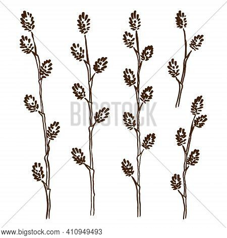Spring Set With Hand-drawn Sketches Of Young Willow Twigs On A White Background. Engraving Style. Ve