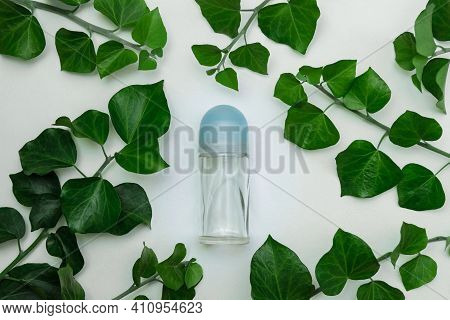 Antiperspirant Roller Deodorant Bottle On A White Background Close-up With Green Branches And Ivy Le