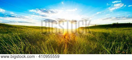 Landscape with green grass field and blue sky.