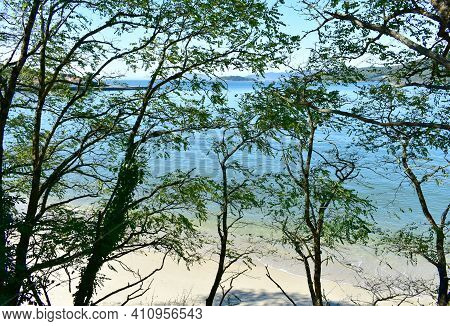 Bay With White Sand Beach And Trees. Porto Do Son, Coruña, Rias Baixas, Galicia, Spain.