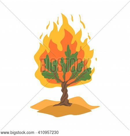 Burning Bush Not Consuming By Flames As Narrative From Bible Vector Illustration