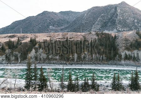 Fast Mountain River Katun In Altay, Siberia, Russia. Sunny Spring Day.