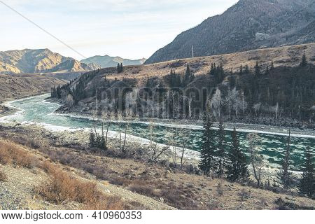 Beautiful Winter Landscape In Winter. Unfrozen Mountain River Flows Among Mountain And Pine Trees.