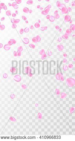 Pink Rose Petal Falling Background. Confetti With Petals. Vector Eps 10. Pink Rose Petals Vector Ill