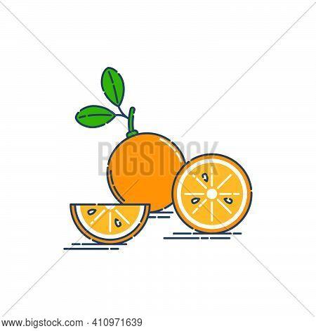 Whole Cut And Slice In Half Tangerine Or Orange Fruit Isolated On White Background. Fresh Cut Citrus