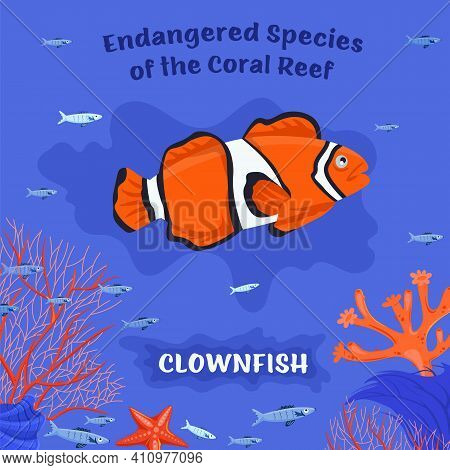 Coral Reef Inhabitants. Endangered Fish Species. Threatened Fish Stocks. Clownfish. Save The Ocean C