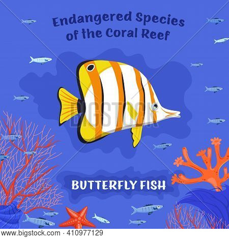 Coral Reef Inhabitants. Endangered Fish Species. Threatened Fish Stocks. Butterflyfish. Save The Oce