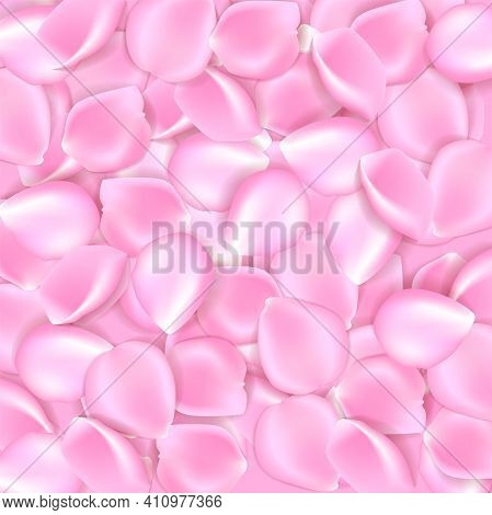Pink Rose Petals Background With Sample Text Vector Illustration. Pink Rose Petals Vector Illustrati
