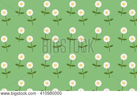 Daisy Blooming Pattern Flat Style Background Vector.flower Textile With Green Background