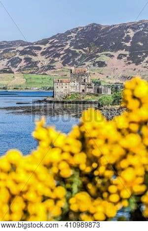 The Eilean Donan Castle With Spring Flowers Against Highlands In Scotland