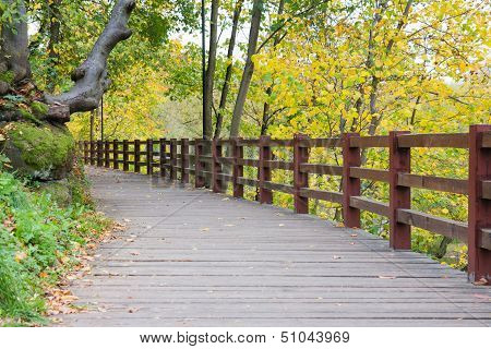 Wooden Road In Autumn Park