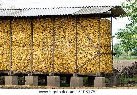 Corn cobs storage