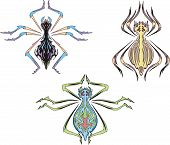 Symmetrical spider tattoos. Set of color vector illustrations. poster