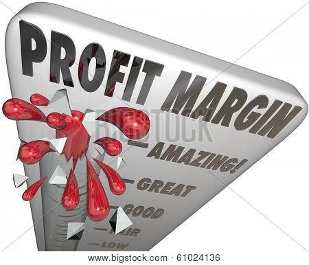 Profit Margin Measure Earnings Income Net Money Made